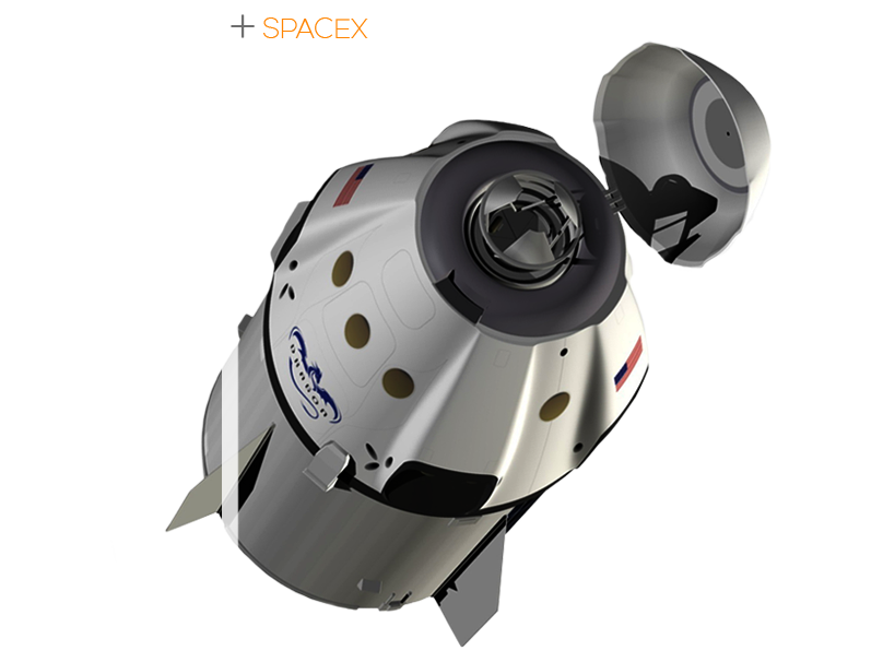 dragon-rock-(use)