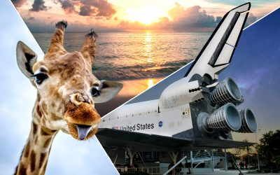 Go Beyond a Rocket Launch Experience on Florida's Space Coast